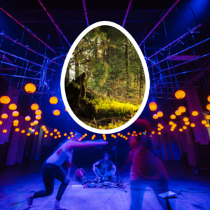 A Living Tree and A Circle of Magical, Musical Lights